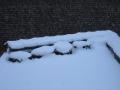 La neige... Potage-Toit Etienne Etterbeek - mars 2013